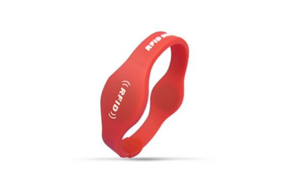 Dual chip RFID wristband