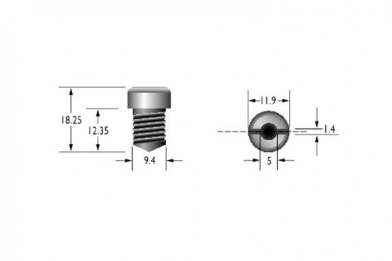 RFID screw tag dimensions